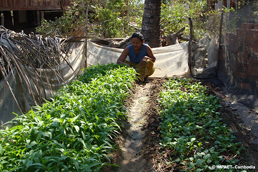 [Photo: Home Garden at Preah Put Commune]